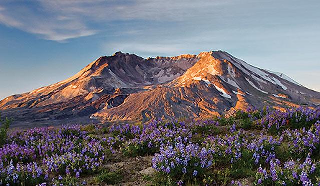Mount St. Helens, Foto: C. Crisafulli